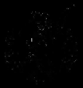 FRANKENSTOFF - Hopfen, Malz & Leidenschaft